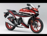 CBR 250 MaceLL Design 13